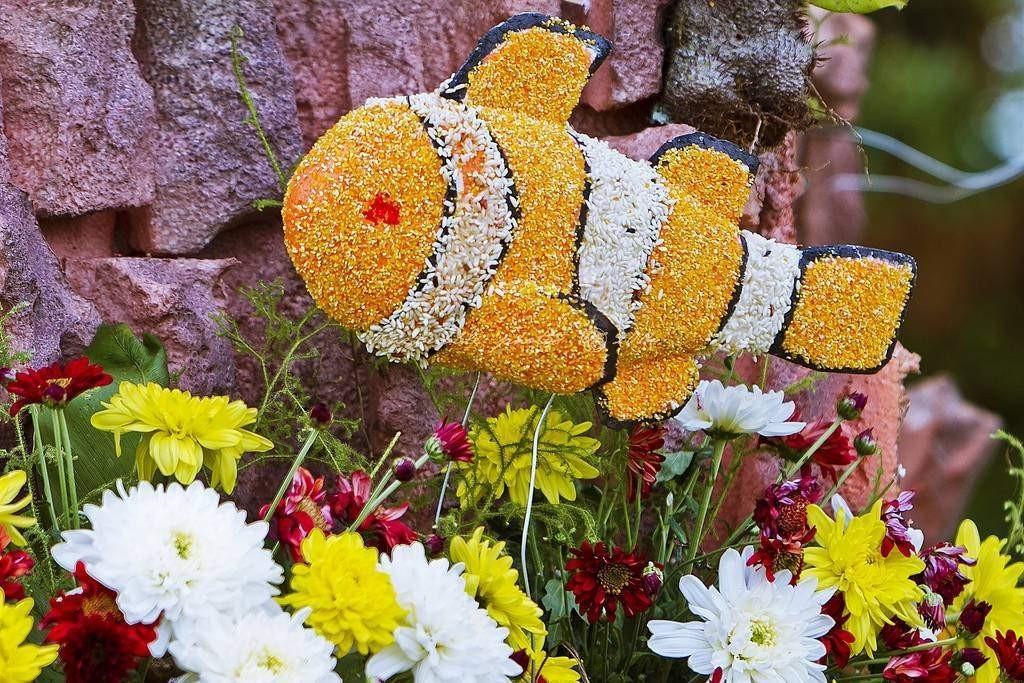 Tomohon Flower Festival